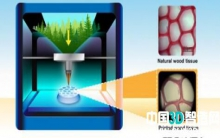3D打印模仿木材的超微结构 以实现环保制造技术